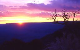 Grand Sunset. Sunset over the Grand Canyon stock image