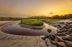 Grand Talbot Island Images libres de droits