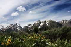 Grand Teton. Teton Range in Grand teton National Park, Wyoming Stock Images
