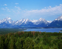 grand teton Obrazy Stock
