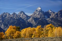 Grand Teton autumn Royalty Free Stock Photography