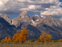 Grand Teton Autumn Royalty Free Stock Images