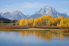 Grand teton autumn Royalty Free Stock Image