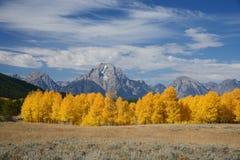 Grand teton autumn Royalty Free Stock Photo