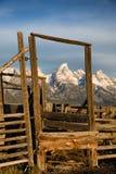 Grand Teton frame royalty free stock photo