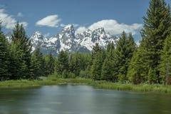 Grand Teton Framed by Trees stock photos