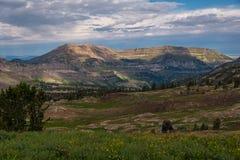 Grand Teton Hiking Trail 6 Stock Photography