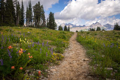 Grand Teton Hiking Trail stock images