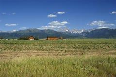 Grand Teton from Idaho Stock Photography