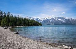 Grand Teton - Lake. An island in Jackson Lake, Grand Teton National Park Royalty Free Stock Images
