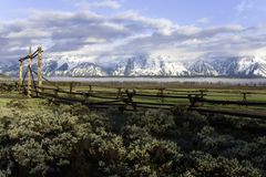 Grand Teton Morning. A beautiful morning sunrise in Grand Teton National Park Royalty Free Stock Photos