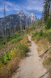 Grand Teton and Mount Owen rise above a hiking path Stock Image