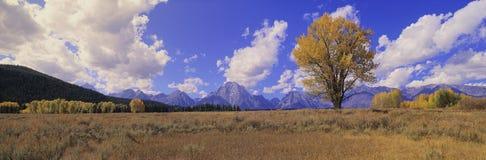 Grand Teton National Park, Stock Photography