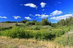 The Grand Teton National Park royalty free stock images