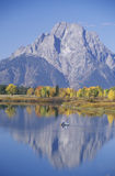 Grand Teton National Park in Autumn Stock Images