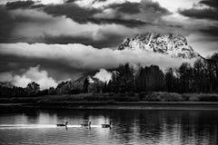 Grand Teton National Park Black and White Stock Image
