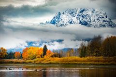 Grand Teton National Park Fall Colors Stock Images