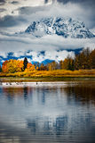 Grand Teton National Park Fall Colors Royalty Free Stock Photo