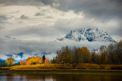 Grand Teton National Park Fall Colors Royalty Free Stock Image