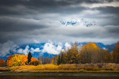 Grand Teton National Park Fall Colors Royalty Free Stock Photos