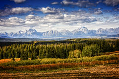 Grand Teton National park landscape. Gran Teton National Park in Wyoming with trees, fields, mountains and cloudy blue sky Stock Images
