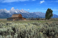 Grand Teton National Park, Wyoming, USA Royalty Free Stock Photos