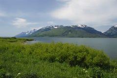 Grand Teton range Stock Images