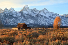 Grand Teton's iconic Barn Royalty Free Stock Photo