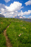 Grand Teton Scenic Hiking Path Royalty Free Stock Photography
