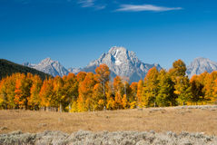 Grand tetons with Fall colors Royalty Free Stock Photography