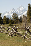 Grand Tetons Fenced Stock Photography