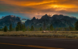 Grand Tetons Landscape Stock Photography