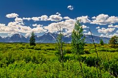 Grand Tetons Mountains Landscape Stock Photography