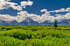 Grand Tetons Mountains Landscape Royalty Free Stock Photo