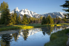 Grand Tetons mountains with pond below. Morning shot of the Grand Tetons range reflected in the pond below Royalty Free Stock Photo
