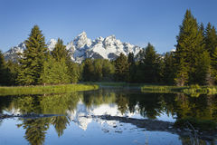 Grand Tetons mountains with pond below. Morning shot of the Grand Tetons range reflected in the pond below royalty free stock images