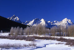 Grand Tetons National Park. Snow capped moutains and aspen in winter stock photography