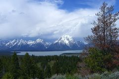 Grand Tetons National Park. With forest and lake Royalty Free Stock Image