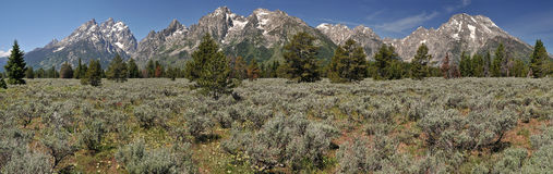 Grand Tetons panorama Stock Images