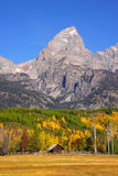 Grand Tetons peak Stock Images