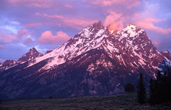 Grand Tetons Portraits Royalty Free Stock Photo