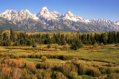 Grand Tetons on Prairie Stock Image