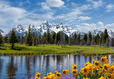 Grand Tetons and reflection stock photography