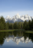 Grand Tetons Schwabacher Landing. Reflections in the water at Schwabacher Landing in Grand Tetons Stock Images