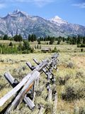 Grand Tetons. The Grand Tetons are set off by fields of sage stock image