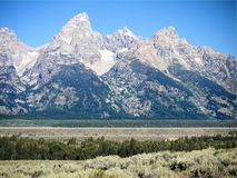 Grand Tetons. The Grand Tetons are set off by fields of sage royalty free stock photography