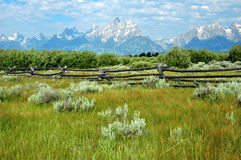 Grand Tetons Wyoming Royalty Free Stock Image