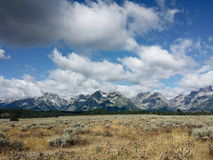 Grand tetons wyoming. View of Grand tetons in wyoming from the ground with clouds and shadows covering snow capped peaks and wheat fields and forests Stock Image