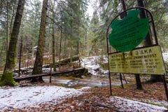 Grand tronc tombé du sapin, sapin dans les bois, rivière de montagne, courant, crique avec la rapide en automne en retard, hiver  Image libre de droits