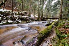 Grand tronc tombé du sapin, sapin dans les bois, rivière de montagne, courant, crique avec la rapide en automne en retard, hiver  Photo stock